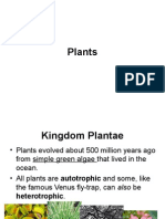 intro and classification of plants