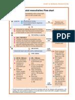 Neonatal Resuscitation Program Flow Chart