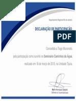 Declaração Participação Seminário (2)