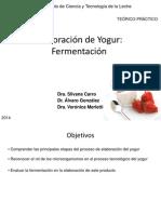 2014. Teorico Practico Fermentaciones 28-10-11