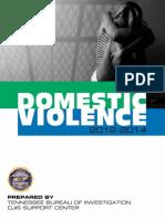 Domestic Violence 2014