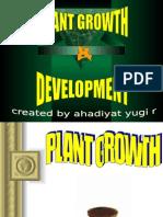 IXB. Plant Growth & Development.ppt