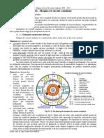NC11-13 Mcc.pdf