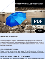 Principios Constitucionales Tributarios 2014