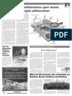 JORNAL - 08.pdf