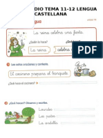 ficha-estudio-tema-12-caste.doc