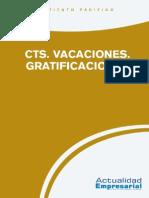 2015 Lab 04 Cts Vacaciones Gratificaciones (1)