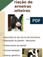 aula 7 Criação_de_terneiras 2.pptx