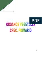 Organografia 2014
