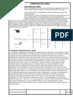 plan de aceite y grasa de un torno.docx