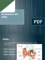 Anatomía de Oido