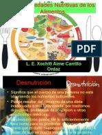 Las Propiedades Nutritivas de Los Alimentos Diapositivas