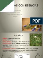 PLANTAS CON ESENCIAS.pptx