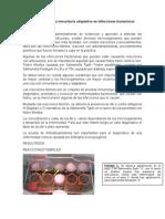 4CM12-P6-E1.docx