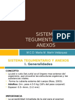 Sistema Tegumentario y Anexos