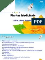 Aula Plantas Medicinais