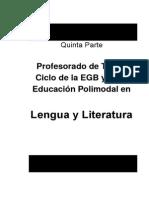 PLAN de CARRERA- Profesorado en Lengua y Literatura