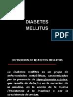 Diabetes Mellitus INICISA
