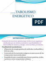 Catabolismo y Anabolismo 2015