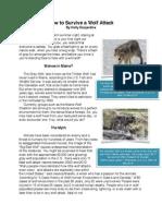 holly d pdf