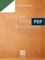 Linguas Dos Povos Indigenas