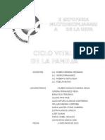 Informe II Expoferia Ciclo Vital Familia
