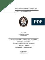 176033501 Paper Echinodermata