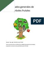 Cuidados Generales de Árboles Frutales