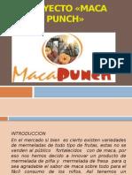 Proyecto «Maca Punch»
