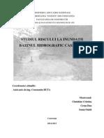 PROIECT - Risc La Inundatii