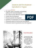 Embriology Paper