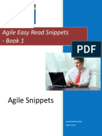 Agile Snippets 1