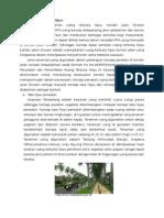 Konsep Tata Ruang Hijau (Placemaking)