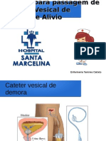 Cateter Vesical de Demora e Alivio