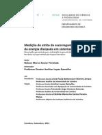 Dissertação de Mestrado - Nelson Marco Xavier Trindade