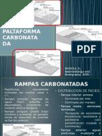 Tipos de Paltaforma Carbonatada