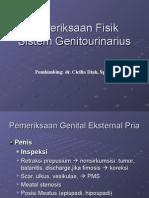 Genital Bangil