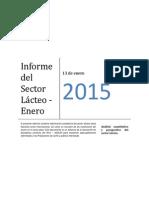 informe_enero_2015 (1)