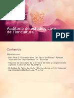 Auditoría de Estudios Caso de Floricultura