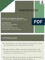 Apresentação-HANTAvirose