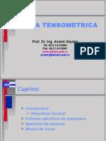 Puntea tensometrica  (1)