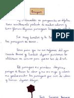 DESCRIPCIÓN DE OBJETOS. (3ºC)