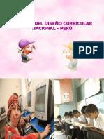 Dcn Perú 2009