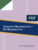 Conceptos Remu y No Rem2012