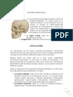 Anatomía y Generalidades Craneofaciales2