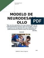 Modelo Neurodesarrollo