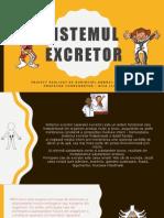 Sistemul excretor - PPT