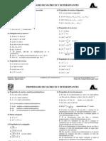 Resumen de Propiedades de Matrices y Determinantes