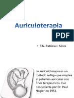 4 Auriculoterapia BIOM 2010 P