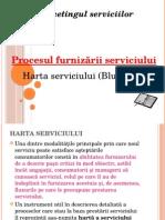 Procesul Furnizarii Serviciului Harta Serviciului